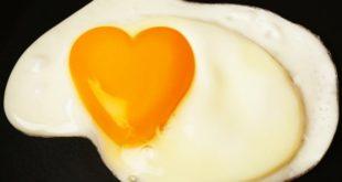 2148623-eggcholesterolx-1614425536.jpg