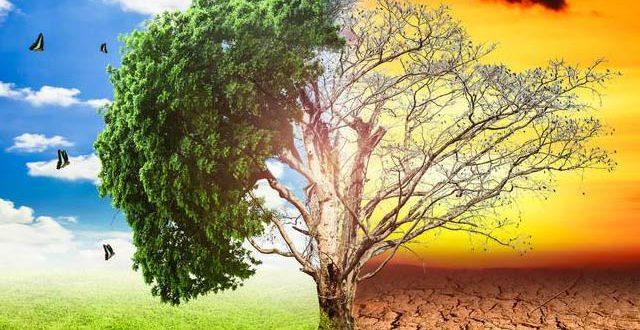 2177915-climatechange-1621023791.jpg