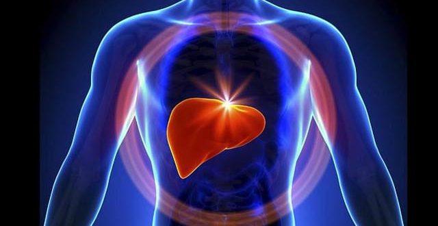 2187393-liver-1623099825.jpg