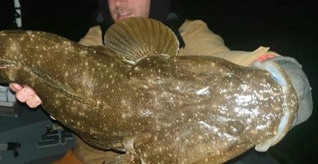 2204158-fish-1626725425.jpg
